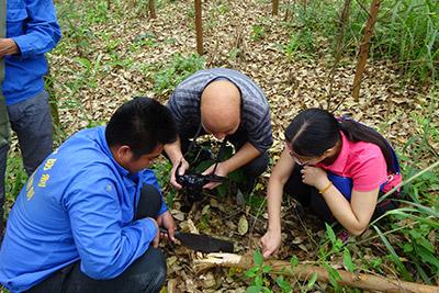 天鹰科普 城市害虫防治措施及种类检查