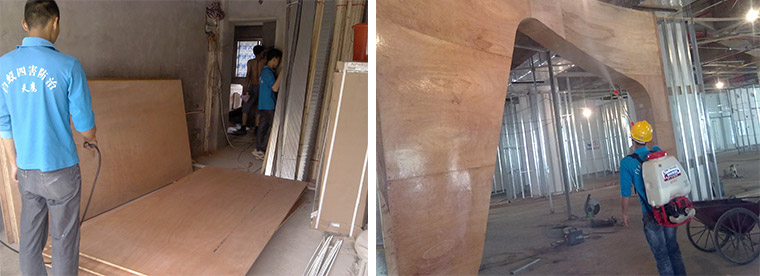 天鹰房屋装饰装修白蚁预防施工方案